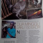 Majalah G Priority Meliput Jualayamhias.com dalam Halaman Peluang Usaha