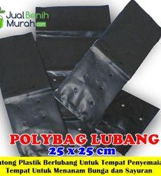 Polybag Lubang 25x25 cm