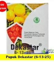 pupuk-dekastar-6-13-25-100-gram