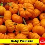 Benih Baby Pumpkin (Maica Leaf)