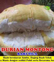 Durian Montong kaki 3