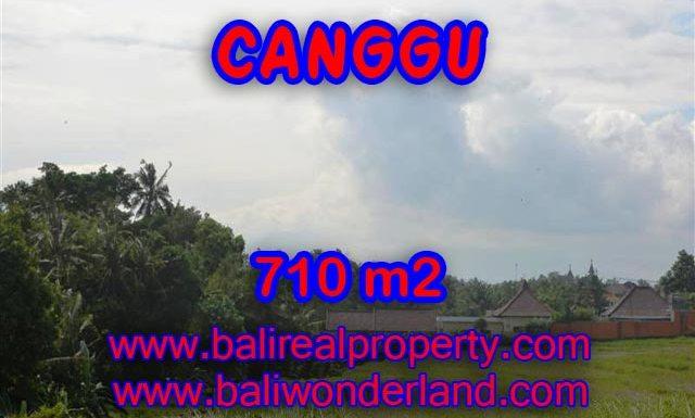 Tanah di Canggu dijual 710 m2 view sawah dan sungai di Canggu Brawa