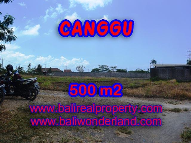 Tanah di Canggu Bali dijual 5 Are di Batu Bolong