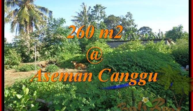 DIJUAL TANAH di CANGGU TJCG174