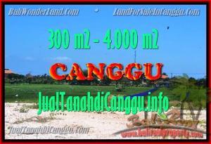 JUAL MURAH TANAH di CANGGU 300 m2  View Sawah