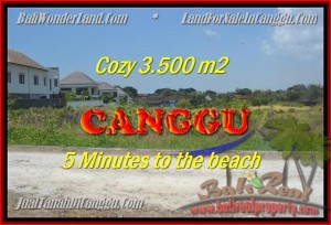 JUAL TANAH di CANGGU BALI 3.500 m2  View sawah lingkungan villa