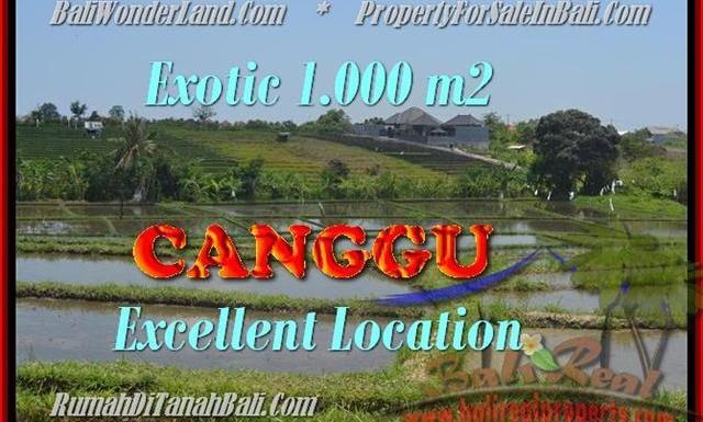 TANAH di CANGGU DIJUAL MURAH 1.000 m2 di Canggu Kayutulang