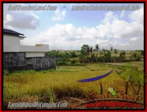TANAH MURAH  di CANGGU BALI DIJUAL 500 m2  View sawah lingkungan villa