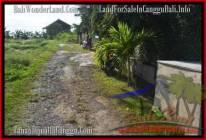 DIJUAL MURAH TANAH di CANGGU Untuk INVESTASI TJCG178