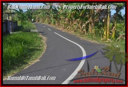 TANAH MURAH di CANGGU BALI DIJUAL 500 m2 di Canggu Batu Bolong