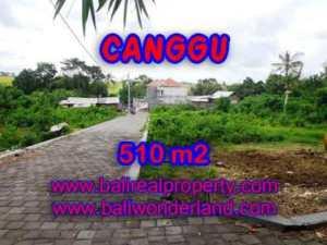 TANAH MURAH di CANGGU JUAL 510 m2  View Sawah