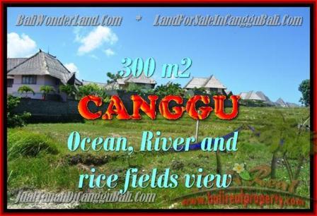 TANAH MURAH di CANGGU JUAL 980 m2 View Sawah, Sungai dan laut