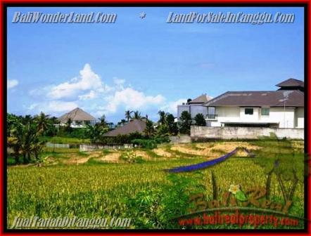 Beautiful PROPERTY CANGGU BALI 930 m2 LAND FOR SALE TJCG146