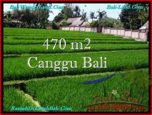 JUAL TANAH di CANGGU BALI Untuk INVESTASI TJCG187