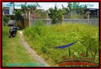 JUAL MURAH TANAH di CANGGU BALI 4 Are Lingkungan villa