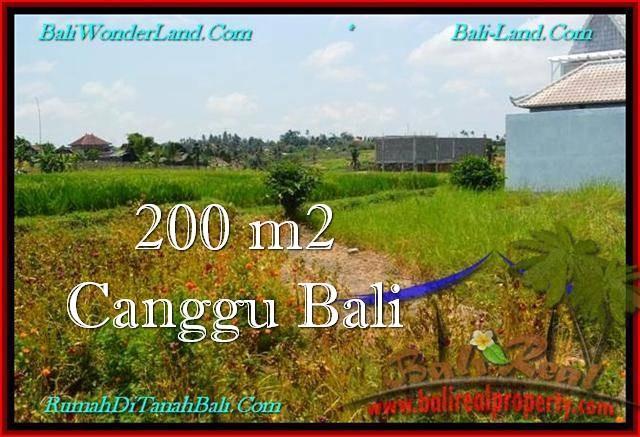 TANAH MURAH di CANGGU JUAL 200 m2 View sawah, lingkungan villa