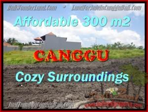 TANAH DIJUAL di CANGGU BALI 300 m2  View Sawah, sungai,lingkungan villa