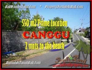 TANAH MURAH di CANGGU JUAL 5,5 Are lingkungan villa
