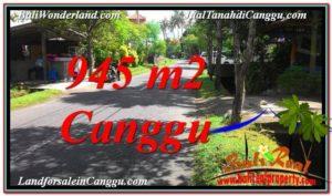 JUAL TANAH di CANGGU 945 m2 Lingkungan Villa