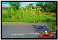 INVESTASI PROPERTI, DIJUAL TANAH MURAH di CANGGU BALI TJCG212