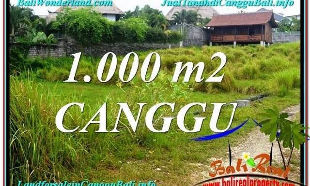 JUAL TANAH MURAH di CANGGU 10 Are View sawah, sungai, laut