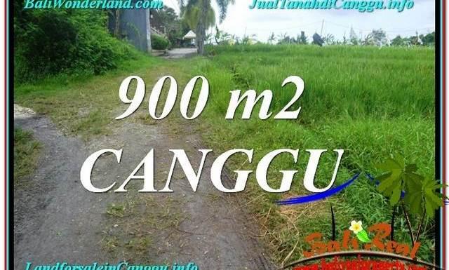 JUAL TANAH MURAH di CANGGU 900 m2 View sawah lingkungan villa
