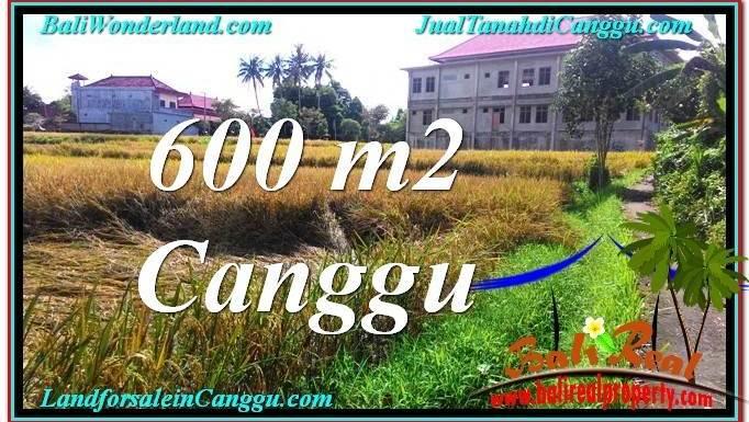 TANAH di CANGGU BALI DIJUAL 600 m2 View sawah lingkungan villa