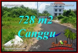 TANAH MURAH di CANGGU BALI DIJUAL 728 m2 di CANGGU BRAWA