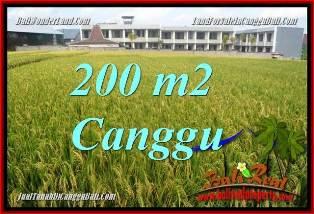 JUAL MURAH TANAH di CANGGU 200 m2  VIEW SAWAH, LINGKUNGAN VILLA