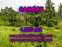 TANAH DIJUAL DI CANGGU MURAH RP 3.100.000 / M2 - TJCG136
