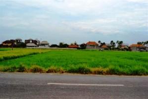 Tanah dijual di Canggu Bali 11 are dekat Echo Beach Canggu – LCG033E
