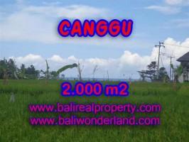 JUAL MURAH TANAH DI CANGGU BALI TJCG140 - PELUANG INVESTASI PROPERTY DI BALI