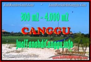 DIJUAL TANAH di CANGGU TJCG151