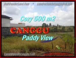 JUAL TANAH MURAH di CANGGU BALI 500 m2  View sawah lingkungan villa