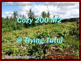 TANAH MURAH JUAL di CANGGU BALI 200 m2  View sawah dan kebun pandan