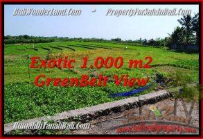TANAH MURAH DIJUAL di CANGGU BALI 1,000 m2 di Canggu Pererenan