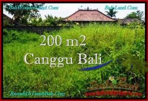 TANAH di CANGGU BALI DIJUAL 200 m2  Lingkungan villa