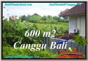 TANAH MURAH di CANGGU BALI 600 m2  View sawah lingkungan villa