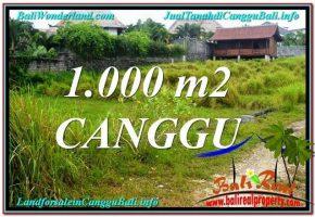 JUAL MURAH TANAH di CANGGU BALI Untuk INVESTASI TJCG214