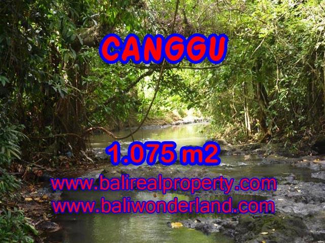 Jual tanah di Bali 1.075 m2 View sawah di Canggu Pererenan