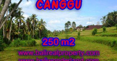 Tanah di Bali dijual 250 m2 di Canggu Pererenan