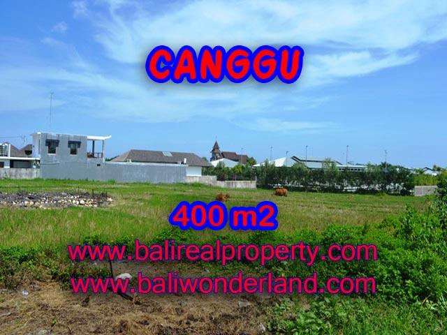 Tanah dijual di Canggu 400 m2 view sawah di Canggu Brawa