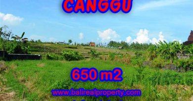 Tanah di Canggu Bali dijual 650 m2 di Canggu Batu Bolong