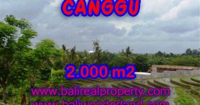 TANAH DIJUAL DI BALI, MURAH DI CANGGU HANYA RP 4.750.000 / M2