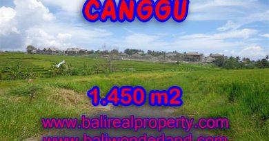 Jual Tanah murah di CANGGU TJCG137 - investasi property di Bali