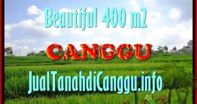 JUAL TANAH di CANGGU BALI 4 Are View Sawah, lingkungan villa