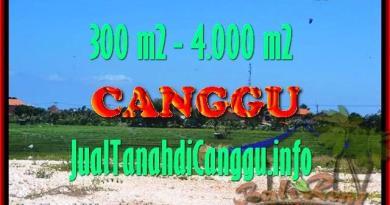 JUAL TANAH di CANGGU BALI TJCG151