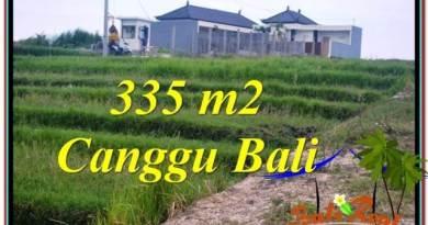 JUAL TANAH MURAH di CANGGU 3.35 Are View sawah, sungai, lingkungan villa