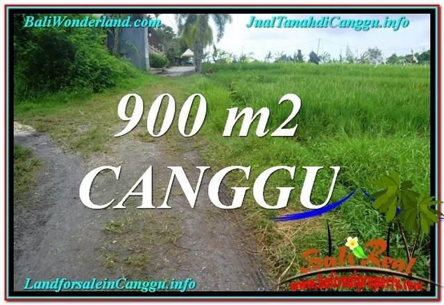 TANAH di CANGGU JUAL 9 Are View sawah lingkungan villa