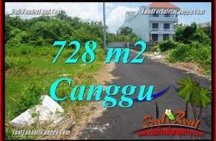 TANAH MURAH di CANGGU JUAL 7.28 Are VIEW SAWAH, LINGKUNGAN VILLA